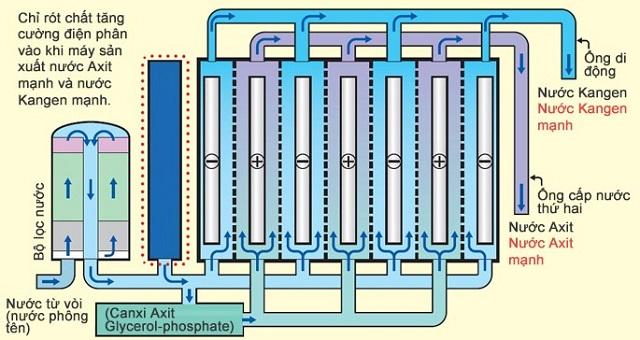 Quá trình điện phân nước ở máy lọc nước Kangen Leveluk JRII