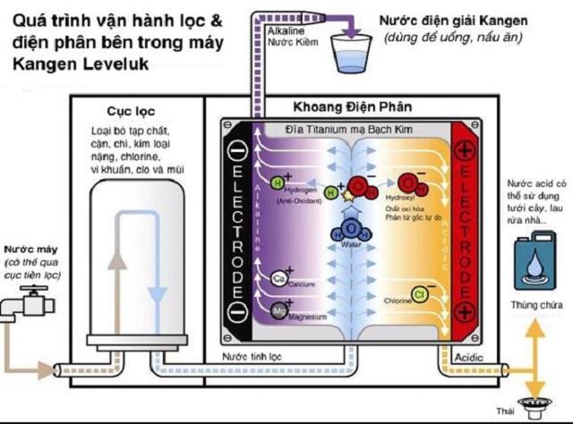 Tóm tắt quá trình điện phân nước với hệ thống 7 tấm điện cực ở máy lọc nước Kangen SD501 Platinum