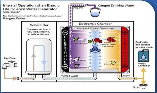 máy lọc nước Nhật, NGUYÊN LÝ HOẠT ĐỘNG VÀ TÁC ĐỘNG ĐẾN CƠ THỂ CỦA MÁY LỌC NƯỚC ĐIỆN GIẢI KANGEN SD501, Nhà phân phối máy lọc nước ion kiềm số 1 Việt Nam | Vitamia