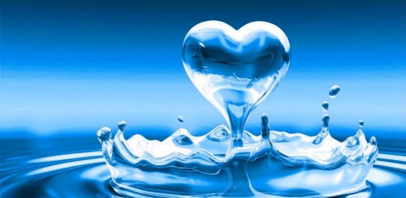Nước Kangen có tốt không, Nước Kangen có thực sự tốt không?, Nhà phân phối máy lọc nước ion kiềm số 1 Việt Nam | Vitamia, Nhà phân phối máy lọc nước ion kiềm số 1 Việt Nam | Vitamia