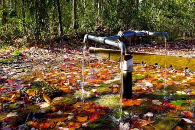 suối chữa bệnh, Khám phá các dòng suối chữa bách bệnh trên thế giới, Nhà phân phối máy lọc nước ion kiềm số 1 Việt Nam | Vitamia
