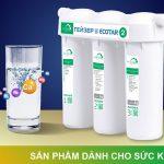 Khách hàng đánh giá rất cao về máy lọc nước GEYSER ECOTAR 2