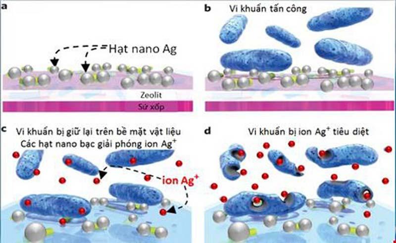 Máy lọc nước Nano GEYSER ECOTAR 4 loại bỏ 100% vi khuẩn