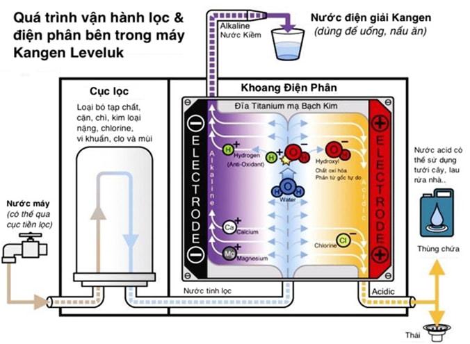 Cơ chế hoạt động của máy lọc nước điện giải ion kiềm