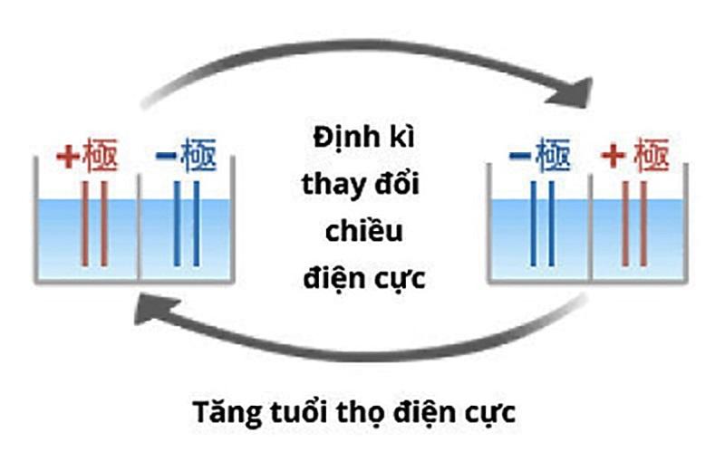 Nihon Trim đã áp dụng công nghệ Double Auto- Change Crossline cho mẫu Trim Ion Grac