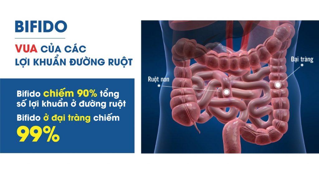 , Điều trị viêm đại tràng với phương pháp của người Nhật, Nhà phân phối máy lọc nước ion kiềm số 1 Việt Nam | Vitamia
