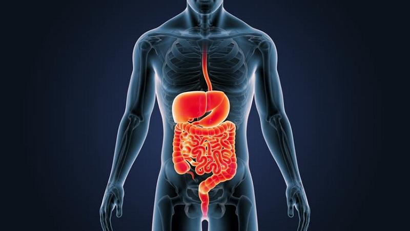 Nước uống ion life hỗ trợ hệ tiêu hoá và tăng cường các chức năng tiêu hoá
