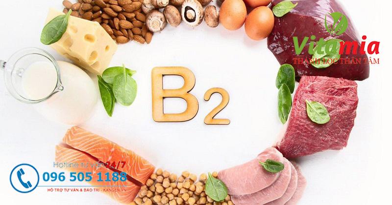 Tầm quan trọng của vitamin B2 trong cơ thể chúng ta