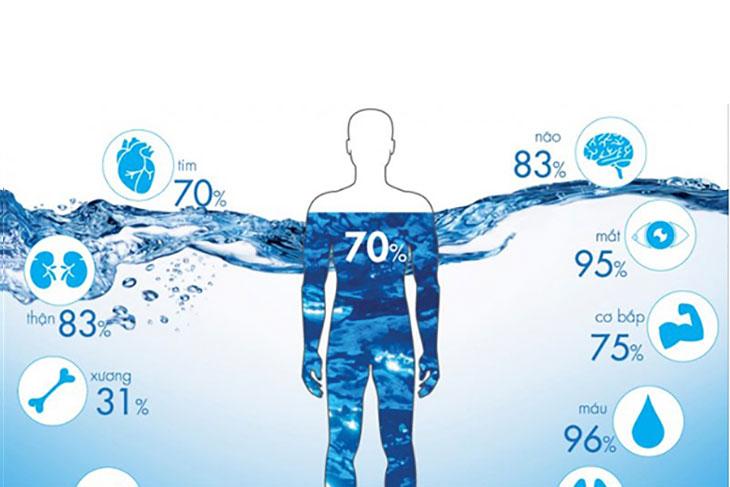 Cơ thể mỗi người chiếm đến 70% là nước