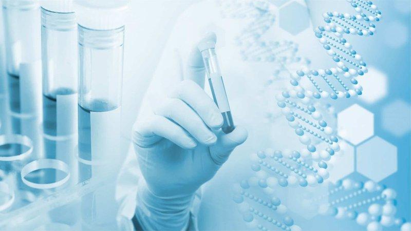 Xét nghiệm gen là cách thức giúp tìm kiếm và sàng lọc những đột biến có thể xảy ở một đoạn gen