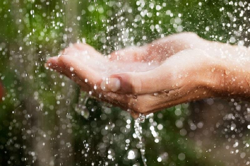 Nước mưa hiện nay không còn an toàn