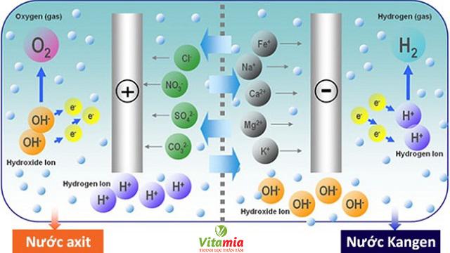 Quá trình điện phân nước ở máy lọc nước Kangen SD501