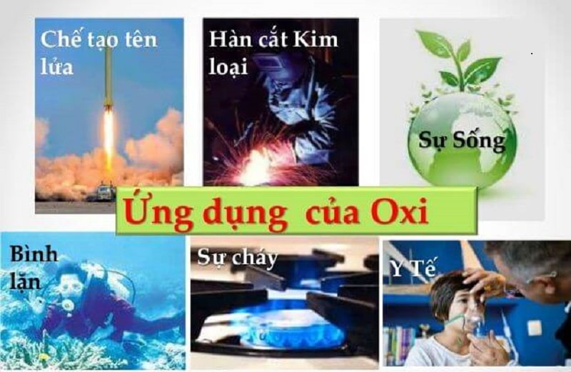 Vai trò quan trọng của oxy và quá trình oxy hóa