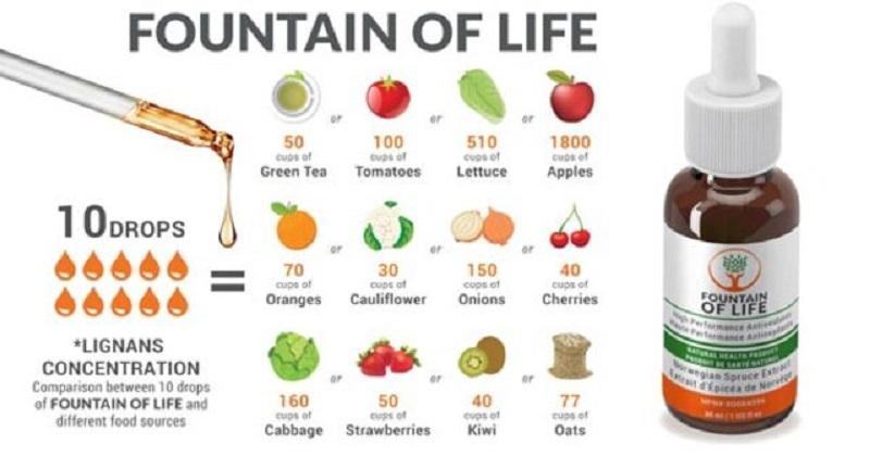 Fountain of Life là nguồn lignan hoàn chỉnh, bao gồm 7 lignan thiết yếu, chủ yếu là 7-hydroxy matairesinol