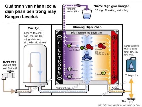 Quá trình tạo ra dòng nước Kangen tốt cho sức khỏe